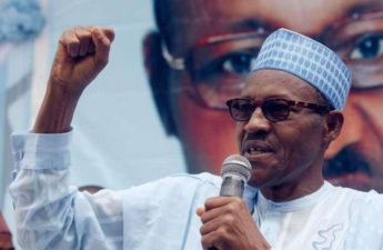 Buhari says multi-party democracy best for Nigeria