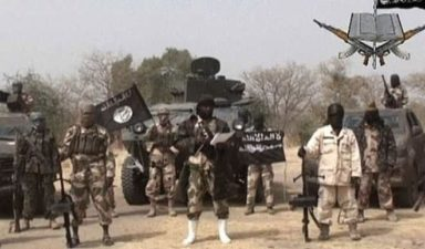 Dozens of Boko Haram fighters surrender in southern Niger