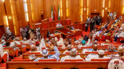 Senate vows to unravel how N213bn power intervention fund was disbursed