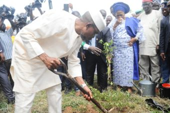 Executive Order: Aregbesola directs public institutions to plant 60 trees each within 90 days