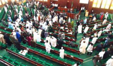 Public Procurement Act 2007 confers no procurement responsibility on my ministry, Fashola tells Reps