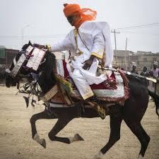 Horse-Race.jpg