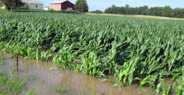 Farm-flood.jpg