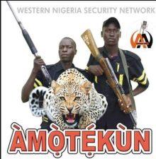 Why I support 'Amotekun', by Charles Kaye Okoye