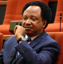 Why Shehu Sani is in trouble, EFCC says as it confirms his arrest
