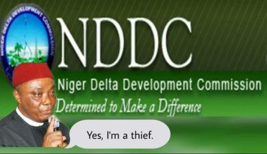 Why Nwaoboshi, allies jitter over Buhari's Forensic Audit of NDDC, striking revelations by Lauretta Onochie