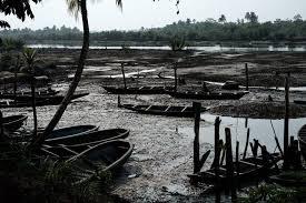 Niger-Delta.jpg