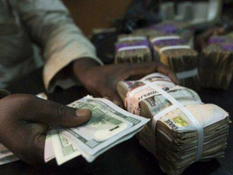 naira-and-dollars-489x367-1.jpg